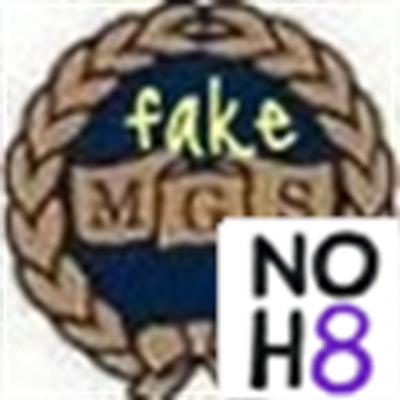 fakeMGS | Social Profile