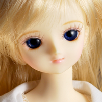 ふぇぶ | Social Profile