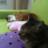 Ru-min Fuwa2_Nyanko のプロフィール画像