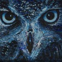 Hawk, 교학사 퇴출 | Social Profile