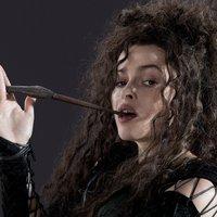 Bellatrix Lestrange | Social Profile