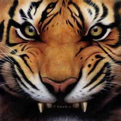 tigerusthegreat's Avatar