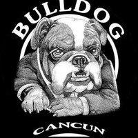@Bulldog_Cancun