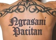 Vladimin Pacitanovsk Social Profile