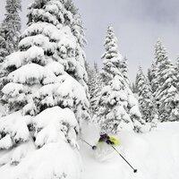 Colorado Snow | Social Profile