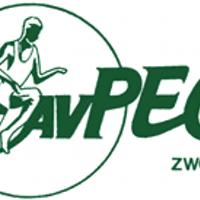 AVPEC1910live