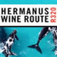 hermanuswine