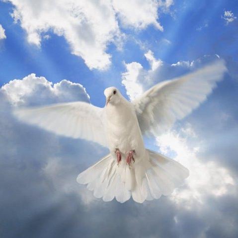 Duch Svaty