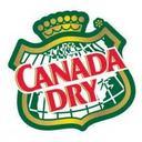 Photo of DietCanadaDry's Twitter profile avatar