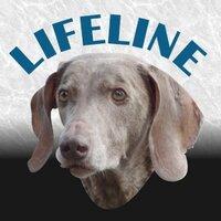 LifelineDogs