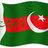 Pakistan Falah Party