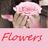 BeautyFlowers1 profile