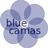 @bluecamas