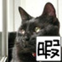 Ryoko Harumi/黒猫 | Social Profile