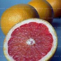 오렌지스팟 | Social Profile