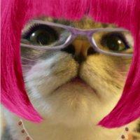 messie☆大人の文化祭3参加 | Social Profile