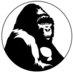 Berggorilla.org's Twitter Profile Picture