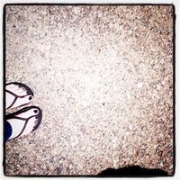 la_det | Social Profile