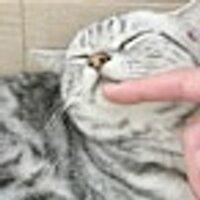ふくちゃん♪ | Social Profile
