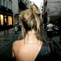 #Stern | Social Profile