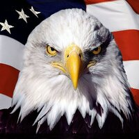 Make Sense America | Social Profile