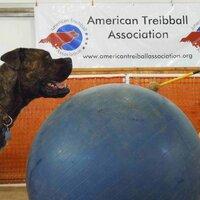 Winston Tryball   Social Profile