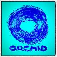 Orchid Footwear   Social Profile