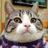 shige_cat