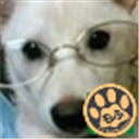 ぽっぷん@さいたま Social Profile