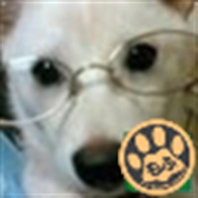 ぽっぷん@さいたま | Social Profile