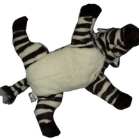Flying Zebra | Social Profile