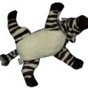 Flying Zebra