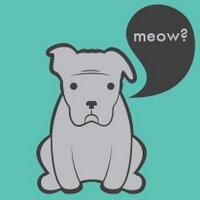 meowtrad | Social Profile