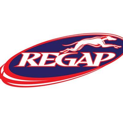Michigan REGAP | Social Profile