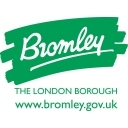 Bromley Council Social Profile