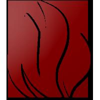 Fuego Social Profile
