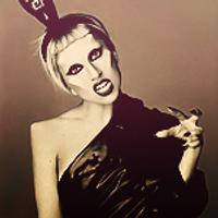 Ladygaga | Lady Gaga | Social Profile