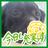 The profile image of Harukaasan