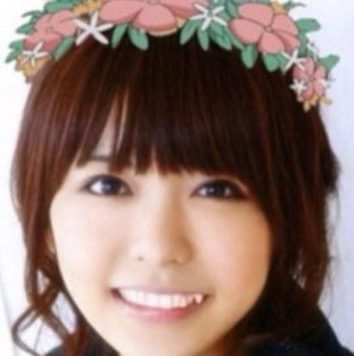 핑보 Social Profile