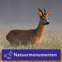 Photo of Natuurmonument's Twitter profile avatar