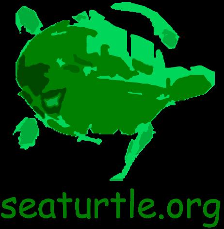 SEATURTLE.ORG Social Profile