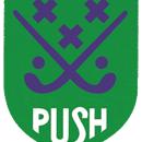 BHVPush