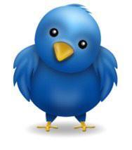 Tweeter Economy Social Profile