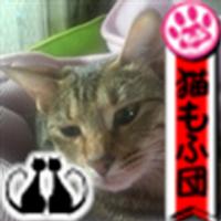 旧・しなみん(。・ω・。) | Social Profile