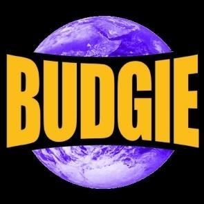 Lee 'Budgie' Barnett Social Profile