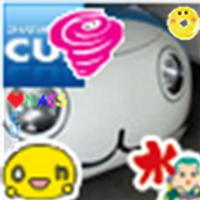 shinobu tomizawa   Social Profile
