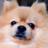 The profile image of 24cana_
