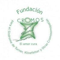Fundación Cromos   Social Profile