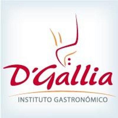Instituto D'Gallia