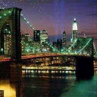 Keep Brooklyn Active | Social Profile